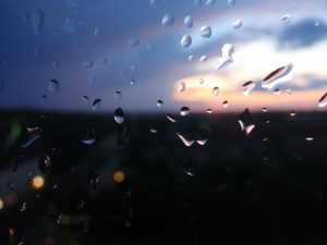 1241809_a_rainy_day_1.jpg