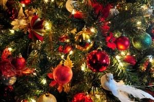 1260938_christmas_tree_5-300x200