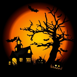 1306743_halloween_night.jpg