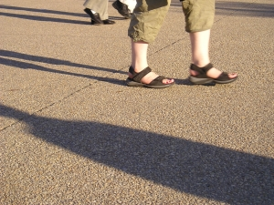 1354934_the_rythmn_of_shadows_triding_on_the_sidewalk.jpg