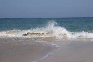 1369457_ocean_wave.jpg