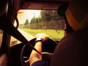 78225_driving.jpg